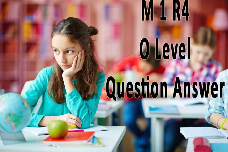 M1 R4 DOEACC NIELIT O Level January 2008 Question Answer Sample Model Paper