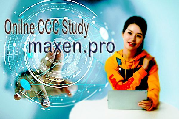 NIELIT DOEACC CCC Introduction to Internet Study Material Notes in Hindi English